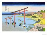 Shoji Gate