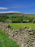 Dry Stone Wall  Swaledale  North Yorkshire  England  UK  Europe