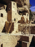 Cliff Palace  Mesa Verde  Anasazi Culture  Colorado  USA