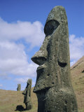 Unfinished Heads on Outer South Slopes of the Crater  Rano Raraku  Easter Island  Chile