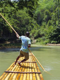 Rafting on the Martha Brae River  Jamaica  Caribbean  West Indies