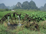 Traditional Bamboo Waterwheel  Guilin  China  Asia