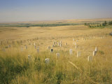 Custer&#39;s Last Stand Battlefield  Custer&#39;s Grave Site Marked by Dark Shield on Stone  Montana  USA