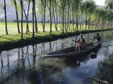 Paddy Fields and Waterway with Local Boat  Kashmir  India