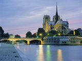 Notre Dame and the River Seine  Paris  France  Europe