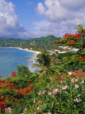Grand Anse Beach  Grenada  Caribbean  West Indies