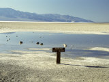 Badwater  Lowest Point in the USA  Death Valley  California  United States of America (USA)