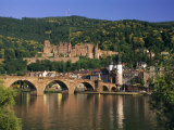 Castle  Neckar River and Alte Bridge  Heidelberg  Baden Wurttemberg  Germany  Europe