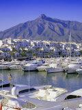 Puerto Banus  Near Marbella  Costa Del Sol  Andalucia (Andalusia)  Spain  Europe