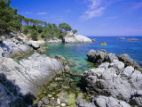 Typical Costa Brava Scenery Near S'Agaro  Costa Brava  Catalunya (Catalonia) (Cataluna)  Spain