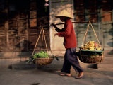 Woman Carrying Fruit and Vegetables  Hoi An  Central Vietnam  Vietnam  Indochina  Southeast Asia