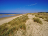 Dunes at Hardelot Plage  Near Boulogne  Pas-De-Calais  France  Europe