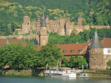 Heidelberg Castle and the Neckar River  Heidelberg  Baden-Wurttemberg  Germany  Europe