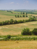 Gascony View from Lavardens Villiage  Midi-Pyrenees  France  Europe
