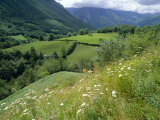 Valley of the River Berthe Near Accous  Bearn  Pyrenees  Aquitaine  France  Europe