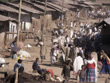 Street Market in a Village Near the Airport  Gondar  Ethiopia  Africa