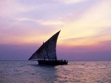 Dhow in Silhouette on the Indian Ocean at Sunset  off Stone Town  Zanzibar  Tanzania  East Africa