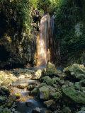 Diamond Falls  St Lucia  Windward Islands  Caribbean  West Indies  Central America