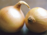 Studio Shot of Two Onions
