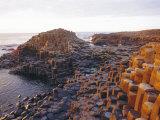 Giant's Causeway  County Antrim  Northern Ireland  UK  Europe