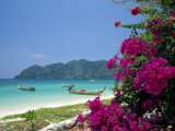 Boats Moored off Beach of Phi Phi Don Island  off Phuket  Thailand