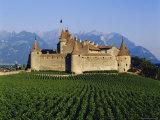 Aigle Chateau and Vineyard  Near Lac Leman  Switzerland