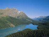Peyto Lake  Banff National Park  Rocky Mountains  Alberta  Canada