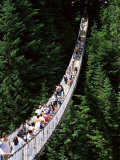 The Capilano Suspension Bridge  Vancouver  British Columbia (BC)  Canada  North America