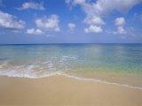 Paynes Bay  Barbados  Caribbean  West Indies  Central America