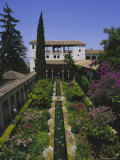 Gardens of the Generalife  the Alhambra  Granada  Andalucia (Andalusia)  Spain  Europe
