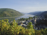 Bacharach  Rhine Valley  Germany  Europe