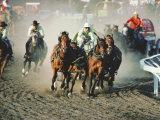 Chuck Wagon Race  Calgary Stampede  Alberta  Canada
