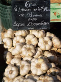 Garlic for Sale on the Market in Cours Saleya  Nice  Alpes Maritimes  Cote d'Azur  Provence  France