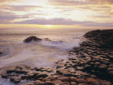 The Giant's Causeway  County Antrim  Ulster  Northern Ireland  UK  Europe