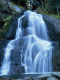 Moss Glen Falls in the Green Mountain National Forest  Vermont  New England  USA