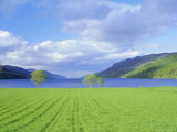 Loch Ness from the Western End  Highlands Region  Scotland  UK  Europe