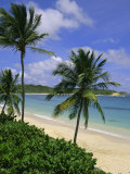 Palm Trees and Beach  Half Moon Bay  Antigua  Leeward Islands  Caribbean  West Indies