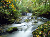 Stock Ghyll Beck  Ambleside  Lake District  Cumbria  England
