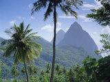 The Pitons  St Lucia  Caribbean  West Indies