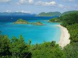 Trunk Bay  St John  US Virgin Islands  Caribbean  West Indies  Central America