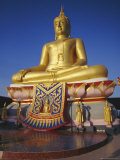 Giant Golden Buddha  Koh Samui  Thailand  Asia