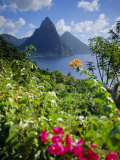 The Pitons  St Lucia  West Indies