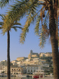 Ibiza Town  Ibiza  Balearic Islands  Spain  Europe
