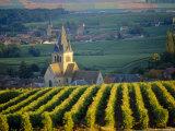 Vineyard and Church  Ville Dommange  Champagne  France