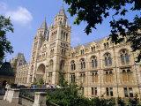 The Natural History Museum  South Kensington  London  England  UK