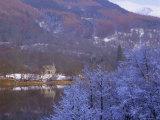 Loch Achray in Winter  the Trossachs  Central Region  Scotland  UK  Europe