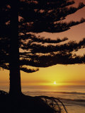Sunrise  Pine Beach  Gisborne  East Coast  North Island  New Zealand  Pacific