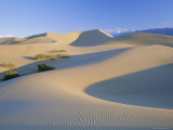 Sand Dunes  Death Valley National Monument  California  USA