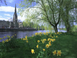 City in Spring  Perth  Perthshire  Tayside  Scotland  UK  Europe