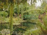 Water Garden and Bridge  Monet's Garden  Giverny  Haute Normandie (Normandy)  France  Europe
